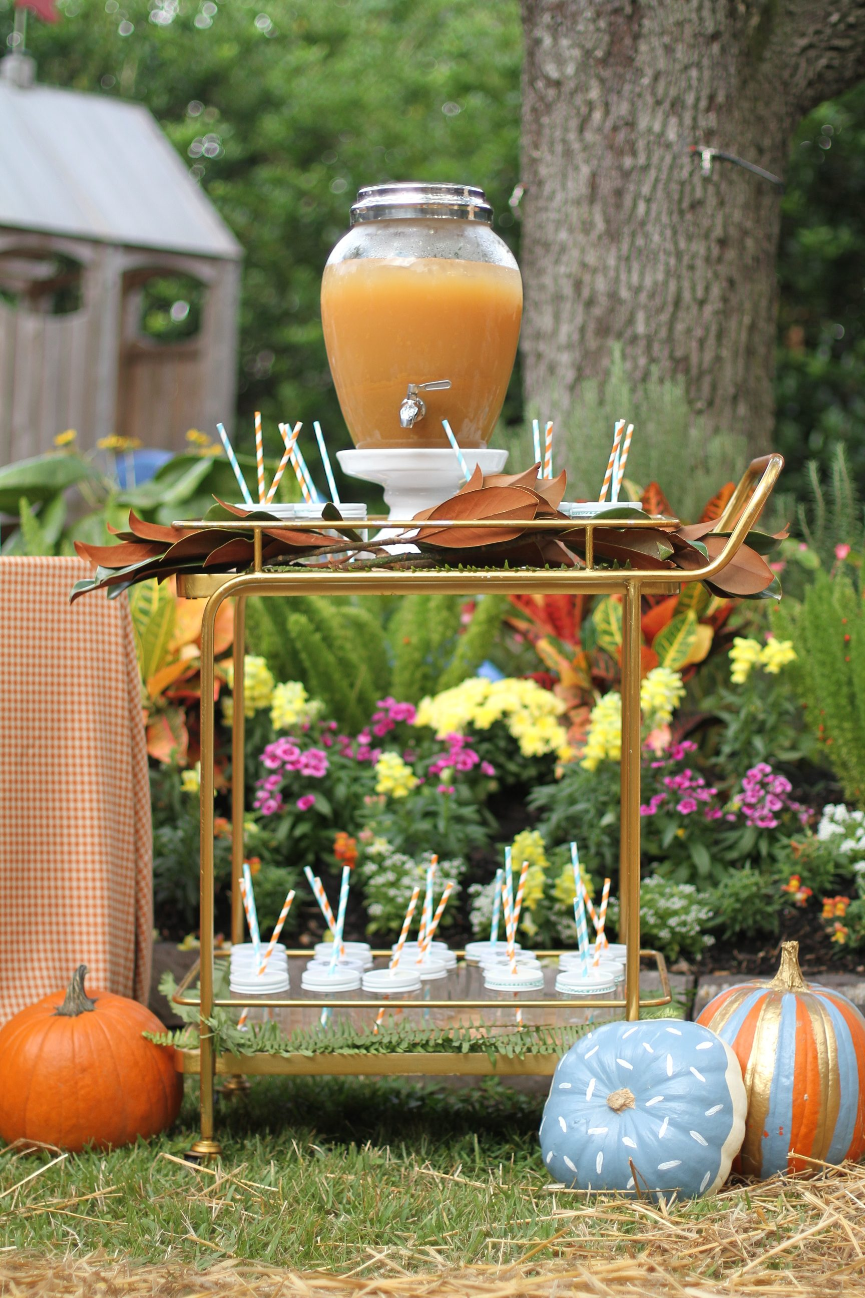L. Avenue Fall themed Birthday Party
